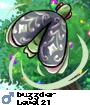 buzzder
