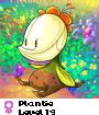 Plantie