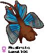 Muskrata