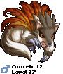 Canosh_t2