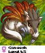 Caneesh