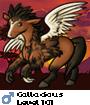 Callacious