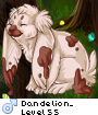 Dandelion_