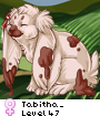 Tabitha_