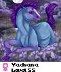 Yachana