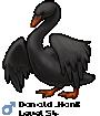 Donald_Honk