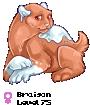 Braison
