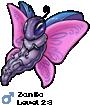 Zanko