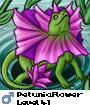 PetuniaFlower
