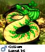 Caliem