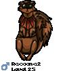 Racoona2