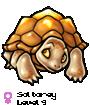 Soltorey