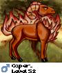 Caper_