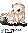 Fluffy__Cat