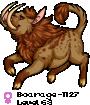 Boarage-1127