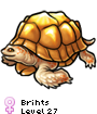 Brihts