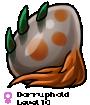 Dorruphold