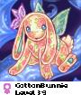 CottonBunnie