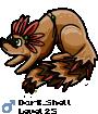 Dark_Shell
