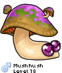 Mushhush
