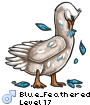 Blue_Feathered