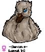 -Swans-