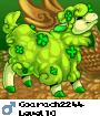 Coarach2244