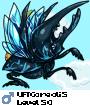 UFTCoreoli5
