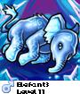 Elefant3