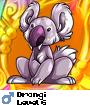 Drongi