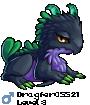 Dragfer05521