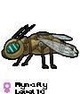 Mynafly