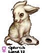 Ophrah