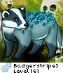 Badgerstripe3