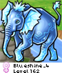 Blueshine_4