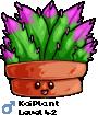 KoiPlant