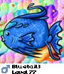 Bluetail3