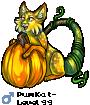 PumKat-
