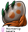 Thorndrop
