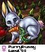 FurryBunny