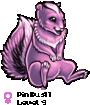 Pinkus11
