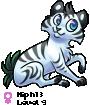 Niph13