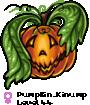 Pumpkin_Kinump