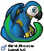 Bird_Macaw