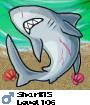 Shark15